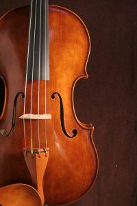 Ruppert Viola Model
